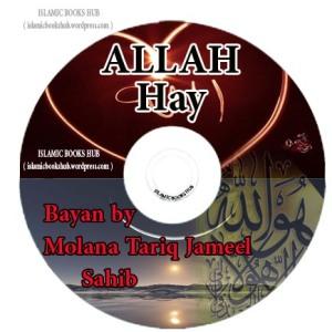 Allah Hay Bayan by Mualana Tariq Jameel